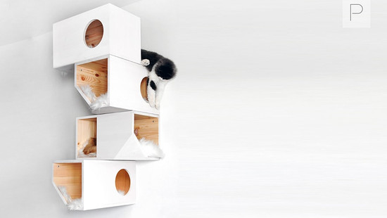 Four Storey Cat House by Catissa