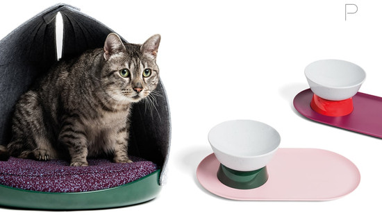 Canopy Bed and Mesa Bowl by Cat Person & Layer Design