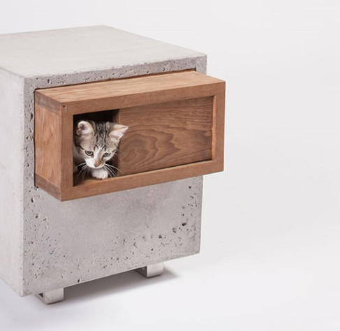 Catcube by Standard Architecture