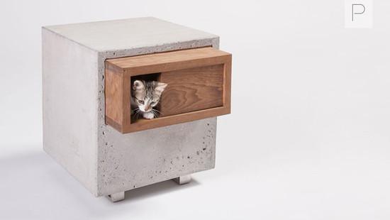 Catcube by Standard Architecture