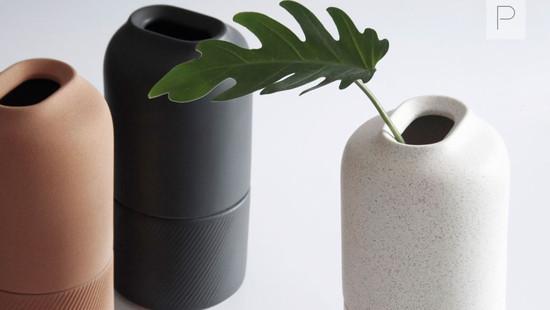 Zenn Vases by Axioma collective
