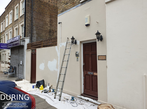 Front house and fence painting and decorating + Door refurbishment