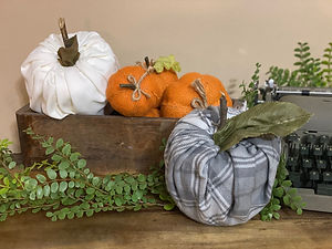 TP Pumpkins.jpeg