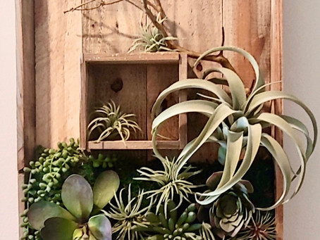 Creating faux succulent wall design