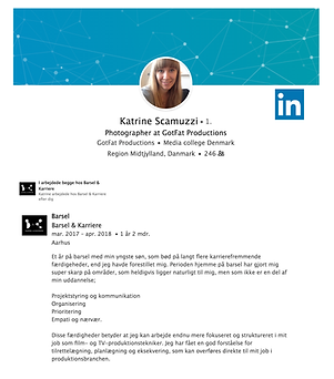 LinkedIn profil med Barsel & Karriere på CVet