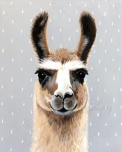 Llama Lars r