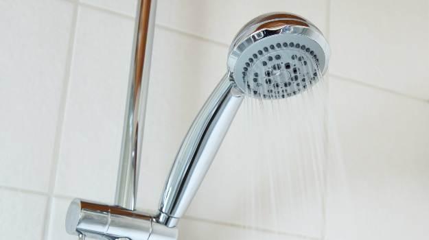 Shower Head Whistles