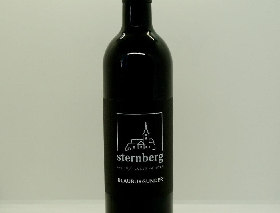 Blauburgunder 2019 vom Sternberg