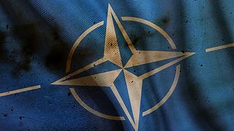 NATO Flag.png