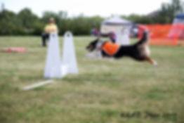 RD SH Race.jpg