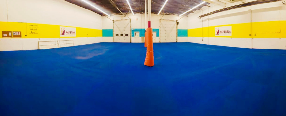 Downstairs Agility Room
