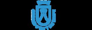 logo-cabildo-de-tenerife-300x98.png