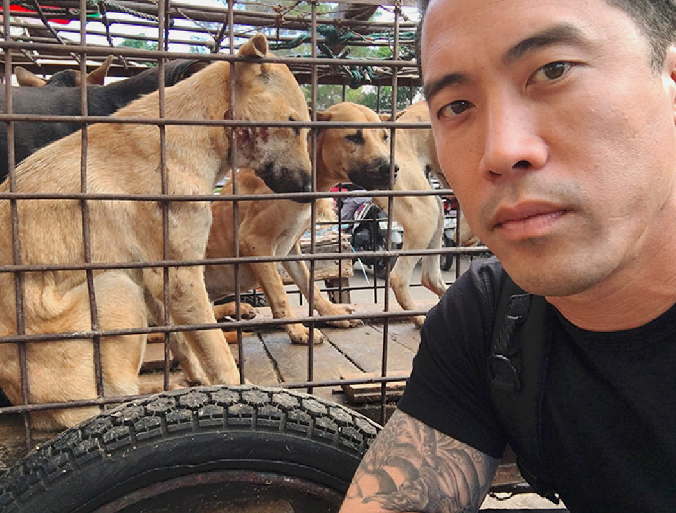 Marc Ching_Dogs in Cage_edited