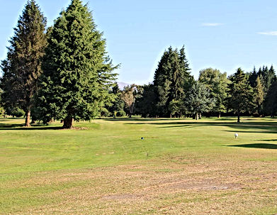 waikaia golf course.jpg