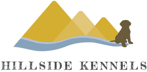 Full Colour Logo Transparent Background_