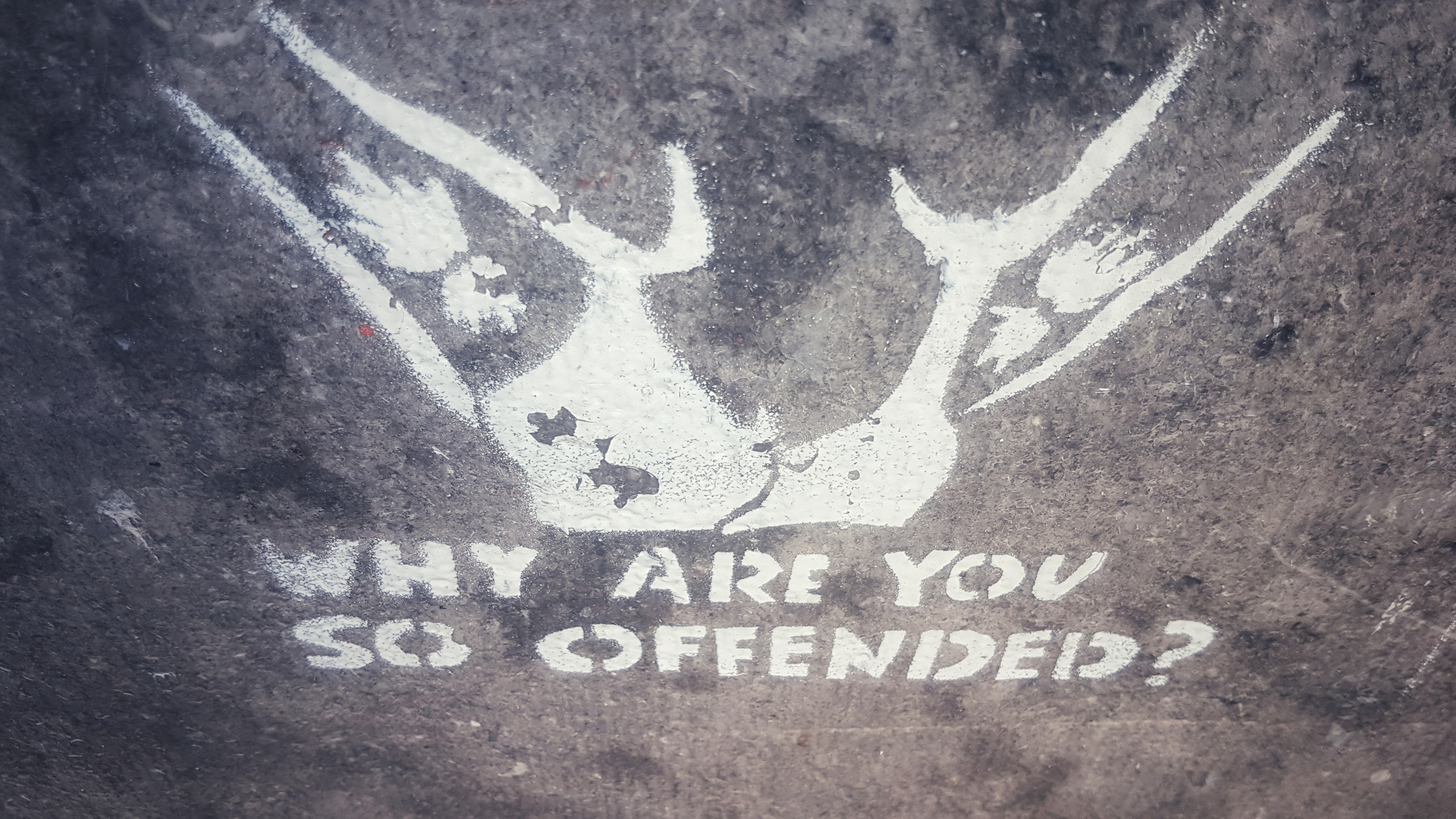 So Offended stenciled on canal house steps