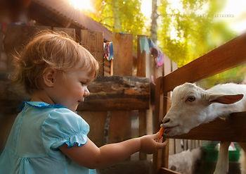 Детский контактный зоопарк Теремок (Наукоград Кольцово)
