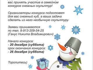 Конкурс снежный скульптур!