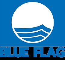 blue_flag_logo.png