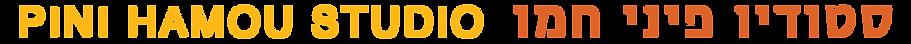 logo_pini_100.png