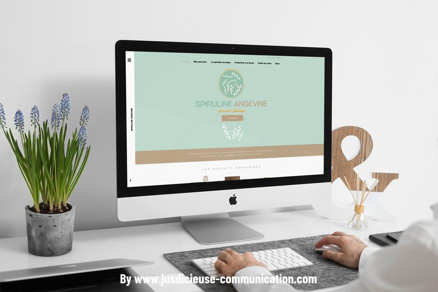 creation-site-web-douai-par-jus-d'icieuse-communication-digital-spiruline.png