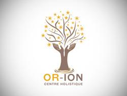 creation logo-graphiste douai-lille-arras-lens-soins holistiques-bien-etre
