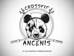 creation logo-graphiste douai-lille-arras-lens-crossfit