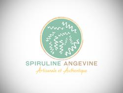 creation logo-graphiste douai-lille-arras-lens-spiruline-producteur