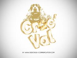 creation logo-graphiste douai-lille-arras-lens-marque de croquetttes chiens
