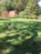 Brookfield, IL landscaper