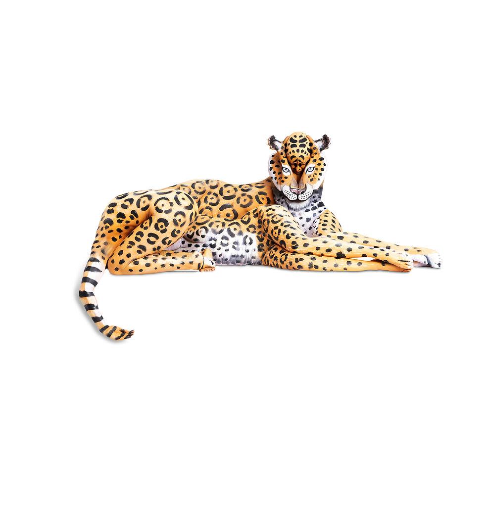 Jaguar_banner 2.jpg