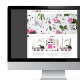 WEB SITE DESIGN 1.jpg