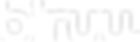 Biruu logo white small.png