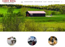 Website Three Boys Distillery
