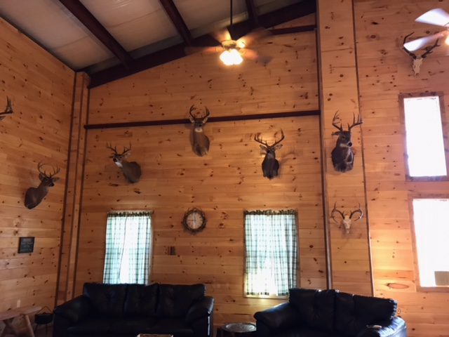 Wall of Bucks at KY Outfitter BCO
