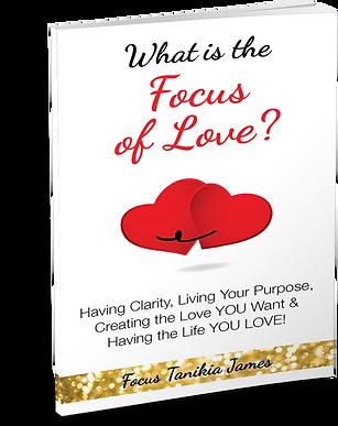 3DBook_Focus Of Love.png