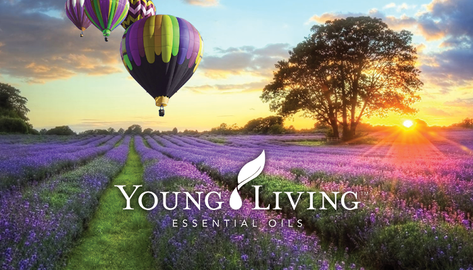 Young_Living_front.png