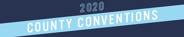 2020 county convention.jpg