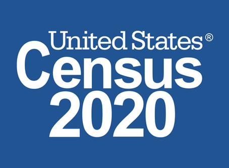 The Census—Much More than a Count