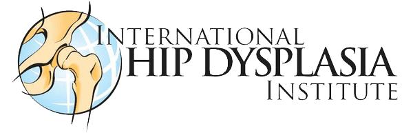 Logo-IHDI-transparent
