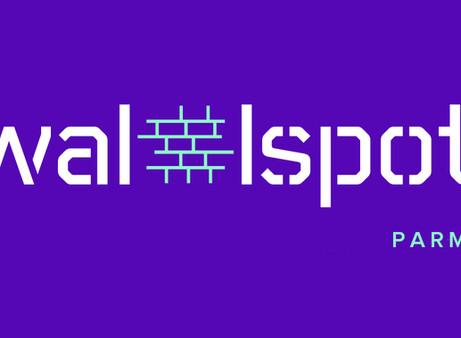 Avviato anche a Parma Wallspot: Network internazionale per la gestione di muri legali