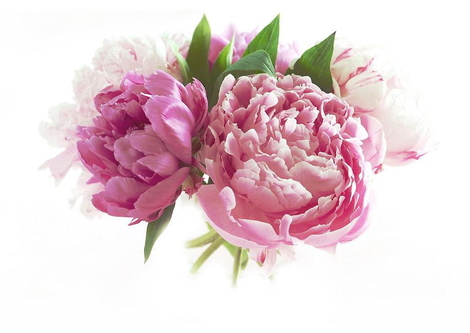 Blumen_spez.jpg