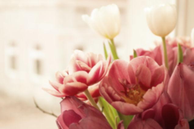 Tulips%25204_5_19_edited_edited_edited.j