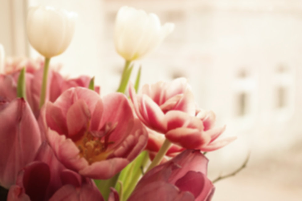 Tulips%204_5_19_edited_edited.jpg