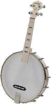 Goodtime Deering Tenor Uke Banjo Ithaca