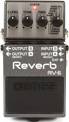 Boss RV6 RV-6 reverb Ithaca Guitar Works