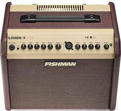 Fishman Loudbox mini Ithaca Guitar Works