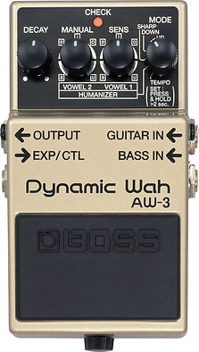 Boss AW3 AW-3 Ithaca Guitar Works.jpg