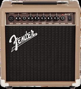 Fender Acoustisonic 15 Ithaca Guitar Wor