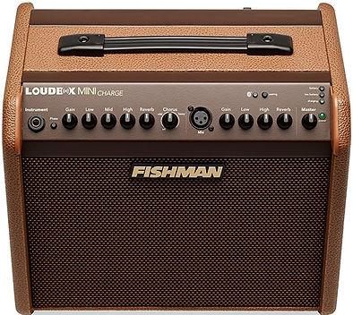 Fishman Loudbox mini charge Ithaca Guita